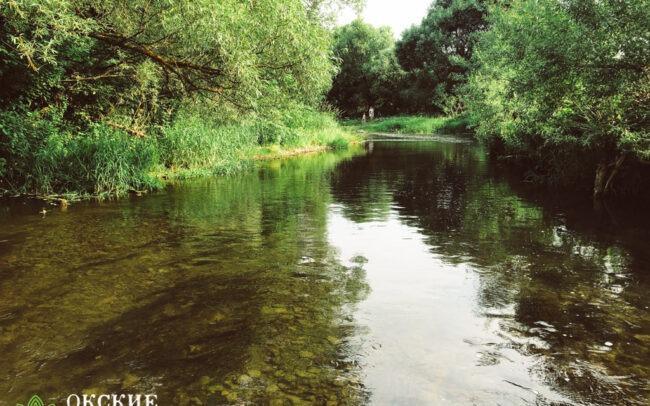 река беспута